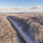 Route 135 - Frozen